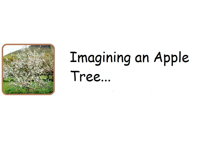 Imagining an Apple Tree…